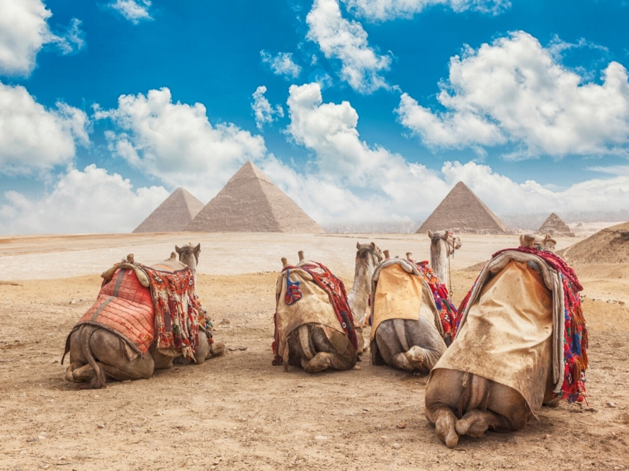 Cairo Highlights Private Day