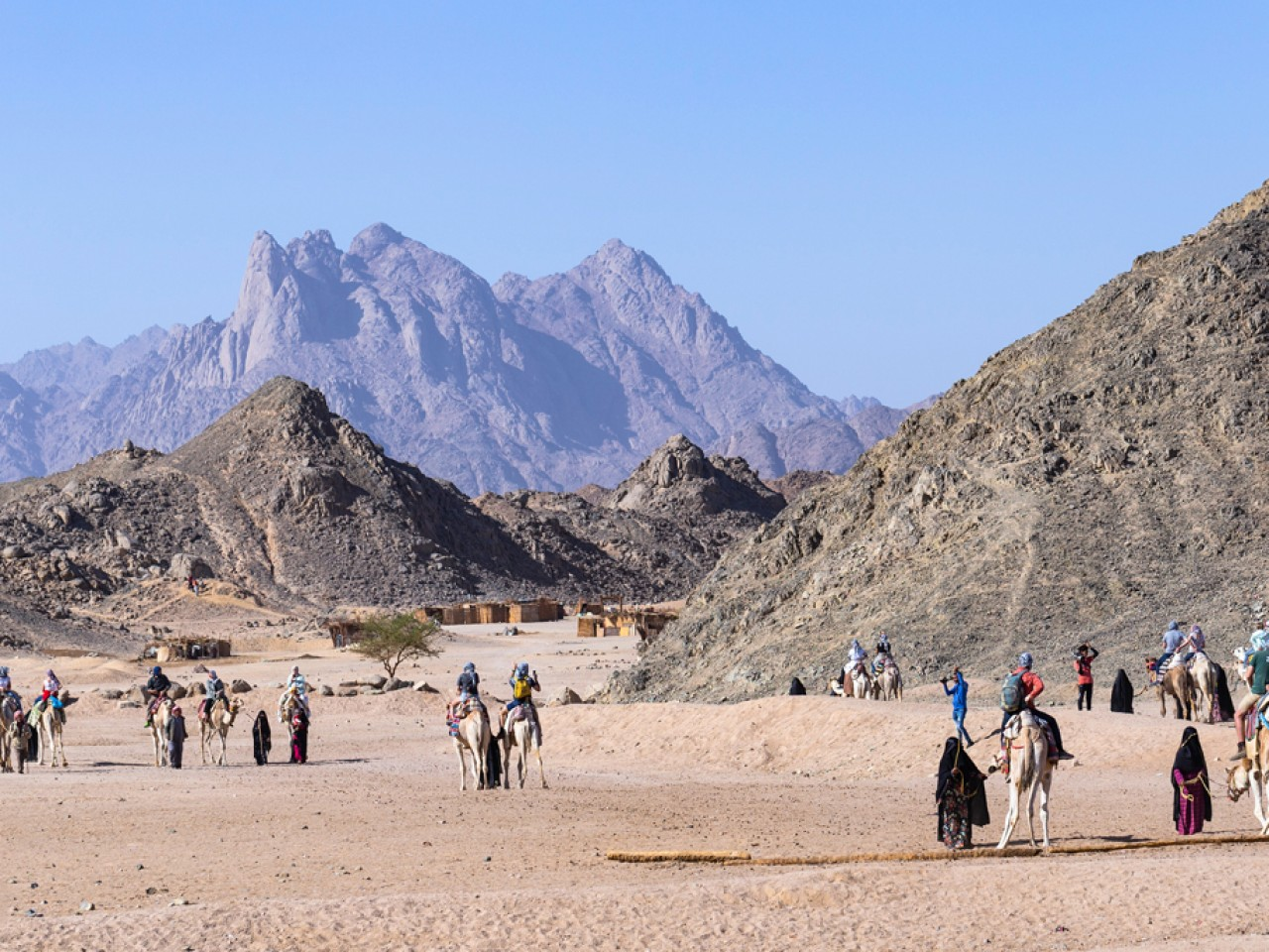 Sharm: Horse or Camel Riding (2 hrs)
