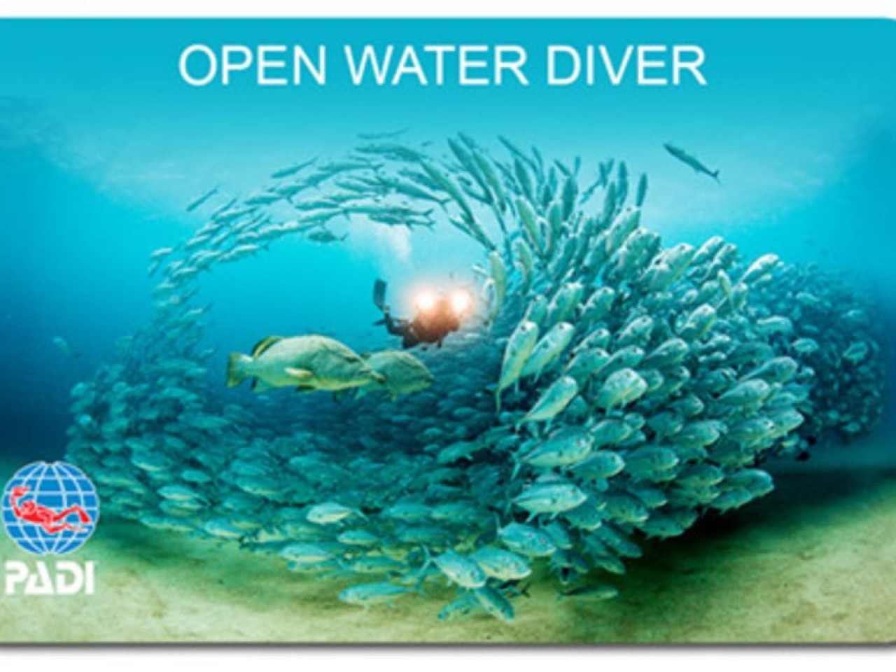 3-Day PADI Open Water Diving Certification