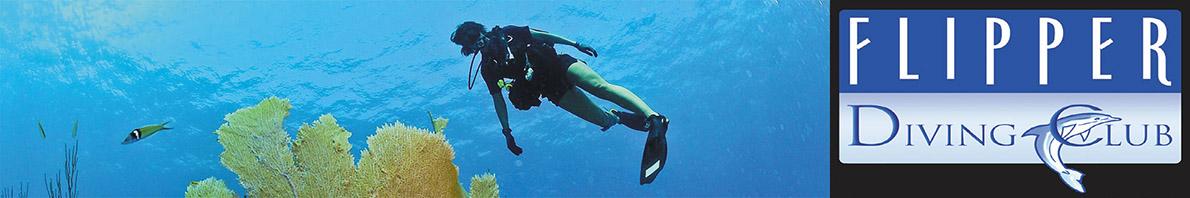 Flipper Diving Club Phu Quoc Vietnam